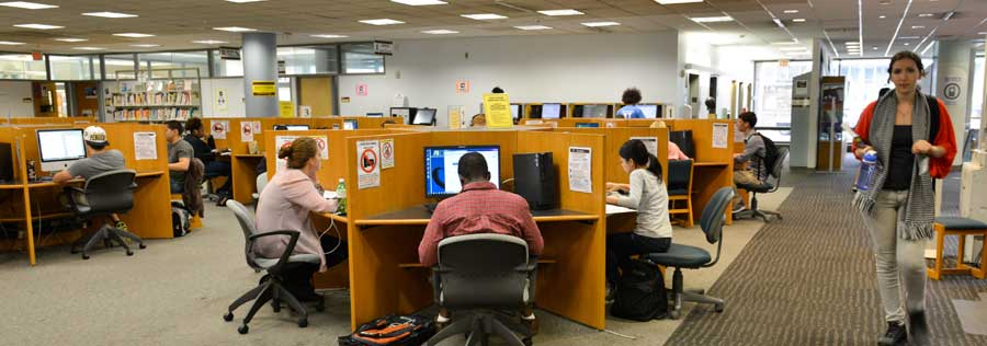 Students studying at carrels in the W. W. Hagerty Library.