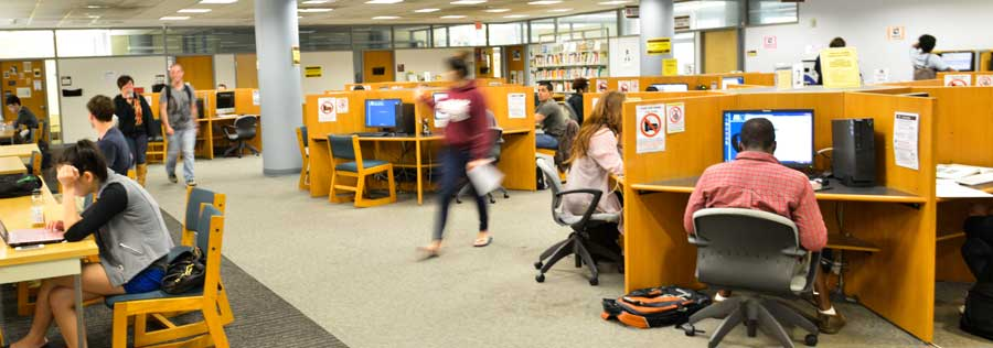 Students studying at carrels on the ground floor of W. W. Hagerty Library.